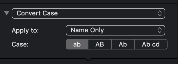 This Action Changes The Case Of All Letters In Selected Section A Filename
